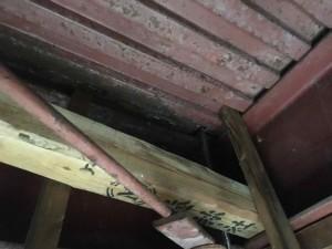 野木町N様邸の雨漏修理の写真