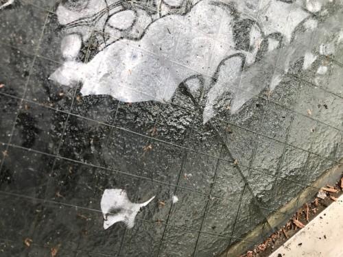 交換前の網入りガラスの写真